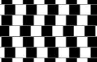 Cafe wall illusion - cafe wall illusion geometricaloptical high resolution