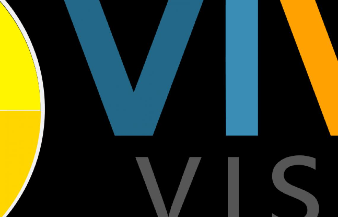 The official Vivid Vision logo.