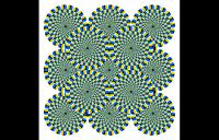 Illusory Motion - illusory motion fixation jitter visual cortex illusion rotsnake